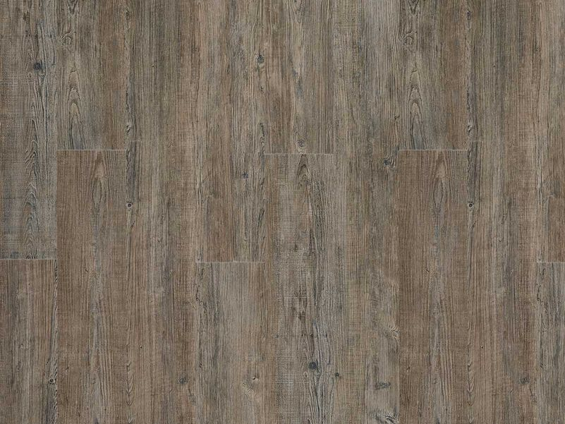 PVC vloer Moduleo Transform Click latin pine