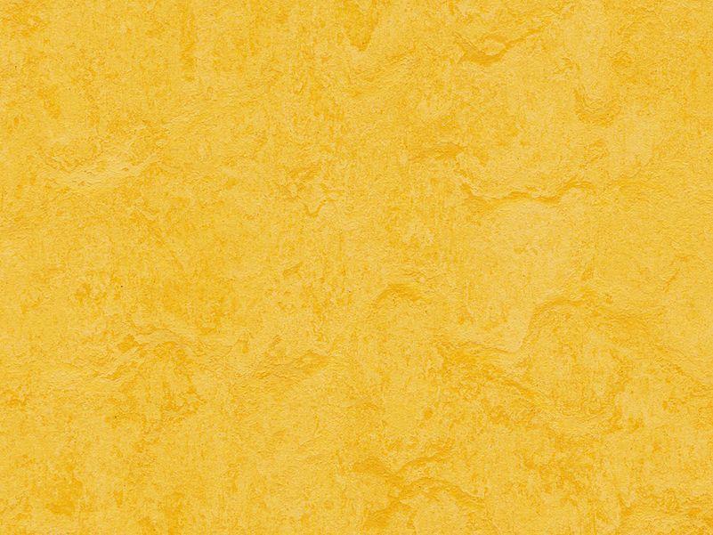 Marmoleum Click Square lemon zest
