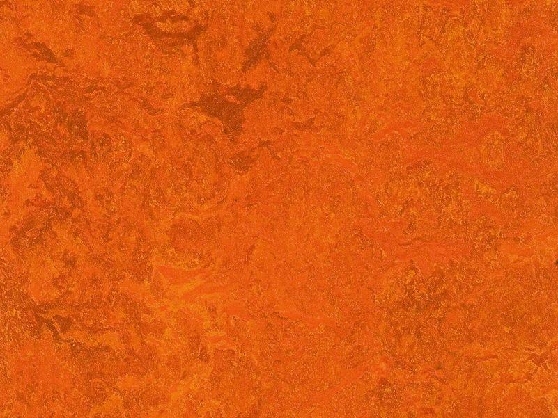 Marmoleum Decibel kyoto