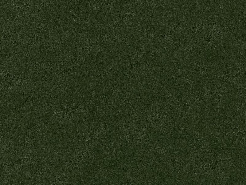 Marmoleum Walton Cirrus bottle green