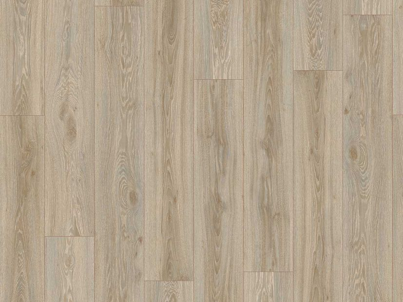 PVC vloer Moduleo Transform blackjack oak