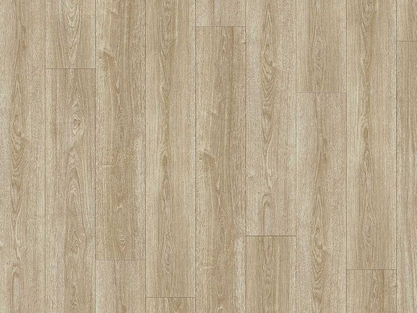 PVC vloer Moduleo Transform Click verdon oak