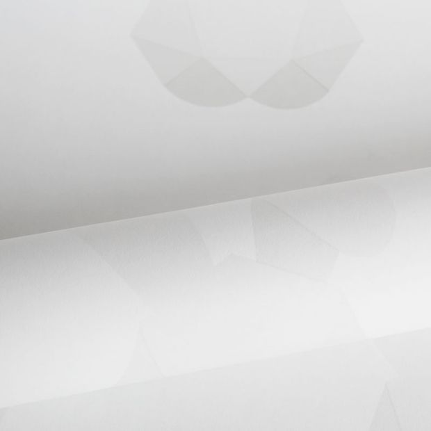 Vliesbehang Origin 347491