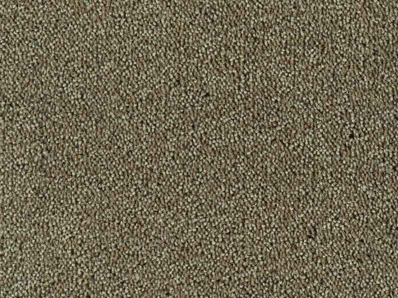 Tapijt Colour King taupe