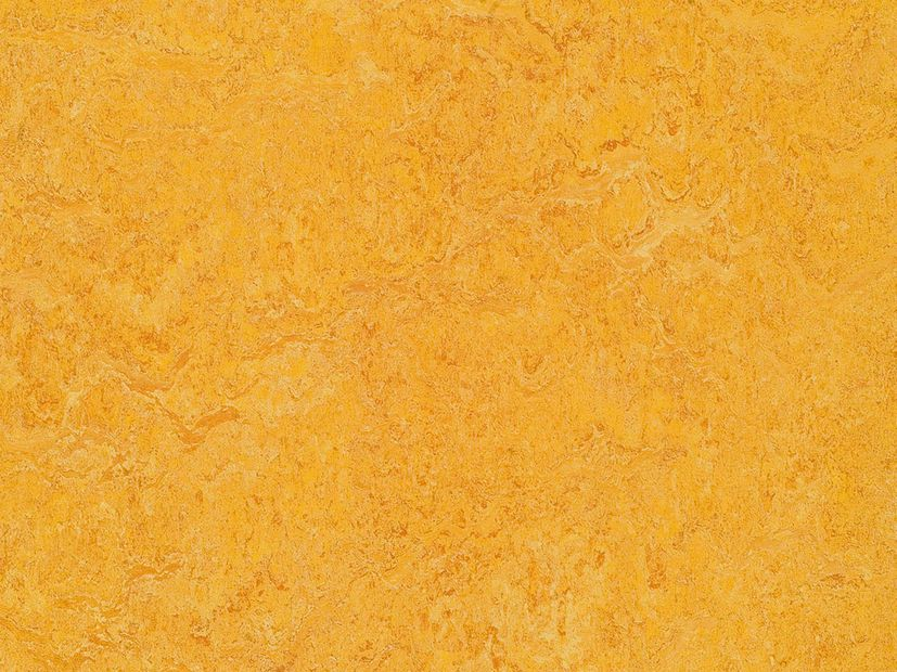 Marmoleum Marbled dandelion